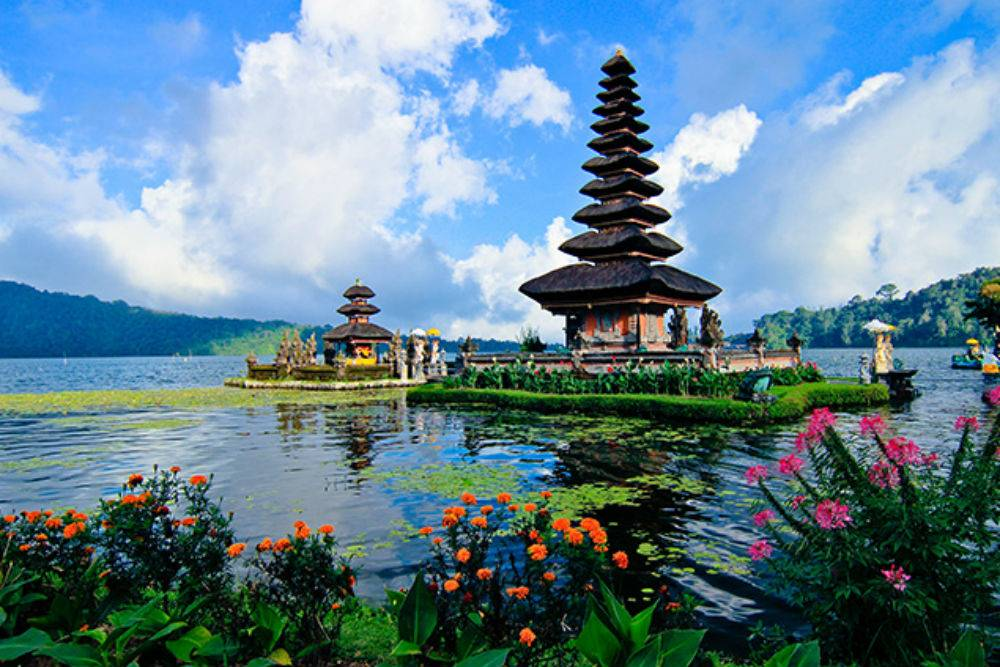 Image Result For Things To Do In Bali